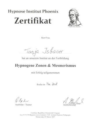 Zertifikat Hypnogene Zonen & Mesmerismus
